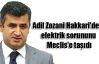 Adil Zozani Hakkari'deki elektrik sorununu Meclis'e...