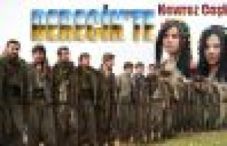 Derecik Beldesi'nde Newroz Coşkusu