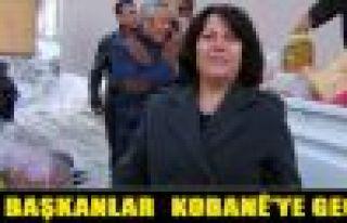 Hakkari Belediyeleri Eş Başkanları Kobani'ye geçti