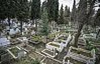 İBB çalışma başlattı: İstanbul'da ölen, doğduğu...