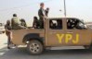 Kobani'de 36 çete öldürüldü