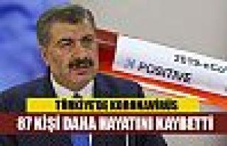 Türkiye'de koronavirüsten ölenlerin sayısı 87...
