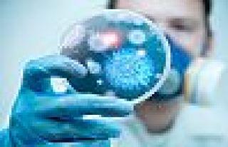 NYT: Virüs böbrek yetmezliğine yol açıyor