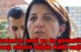 'Öcalan'ın sesli ya da görüntülü mesajı sürece...