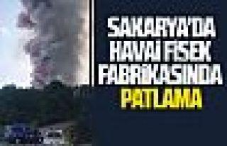 Sakarya'daki havai fişek fabrikasında patlama: 2...