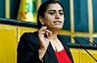Sebahat Tuncel'in beraat gerekçesi: Hakim niyet okumaz