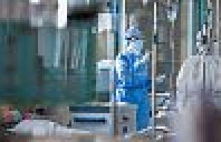 Türkiye'de korona virüsünden 20 kişi daha öldü