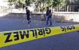 Urfa'da kadın cinayeti: Eşi ve kızını öldürdü