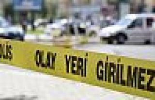 Van'da kadın cinayeti