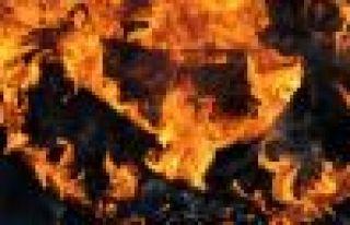Yekemîn agirê Newroza 2015'an li Bazidê hat gurkirin