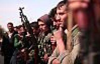 YPG: Amerikan silahları tarihi bir karar