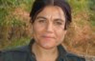 Zagros: PKK tevgera qehremaniyê ye