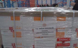 Çin'den 3 milyon doz koronavirüs aşısı Türkiye'ye geliyor