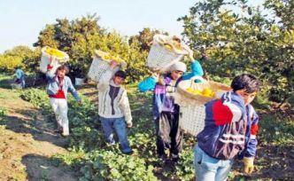 Manşetlerdekiler 'başaran' çocuk işçiler