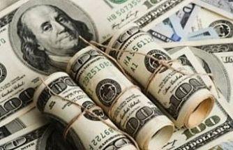 Dolar tarihi zirveyi yeniledi