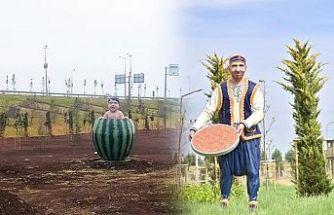 Diyarbakır'da gündem olan 'karpuzlu çocuk' ve 'tatlıcı' heykelleri kaldırıldı