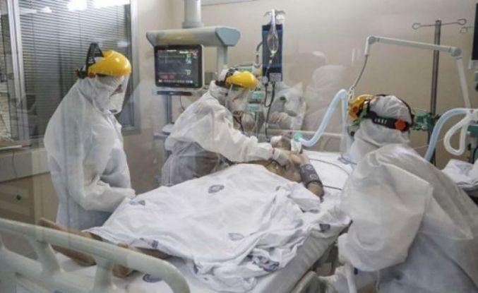 Korona virüsü salgını: 186 kişi daha öldü, 11 bin 479 yeni vaka tespit edildi