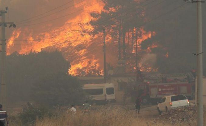 TTB'den 'Muğla' yangınları raporu: 1 ölüm 49 yaralanma var