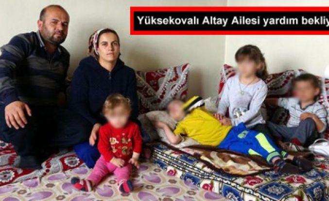 Yüksekovalı Altay Ailesi yardım bekliyor