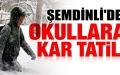 Şemdinli'de okullara kar tatili